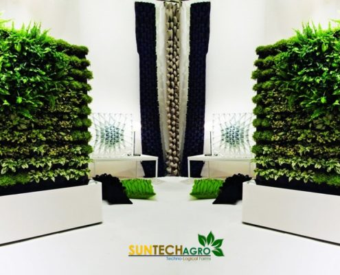 Living Green Walls for Small Spaces