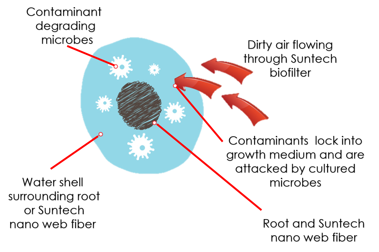 Biofiltration