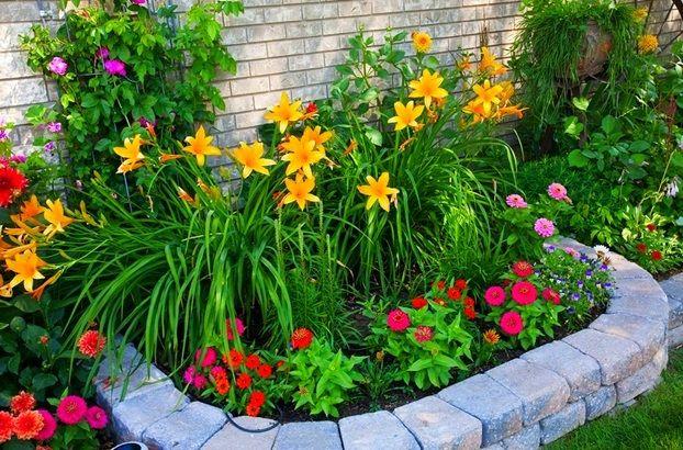 Little flower garden