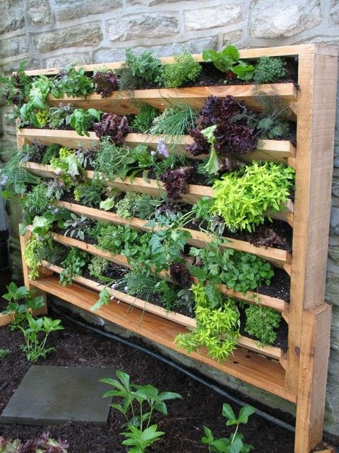 Vertical garden with connected boxes